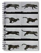 Cat Running Spiral Notebook