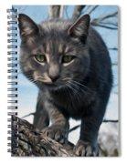 Cat Tree Spiral Notebook