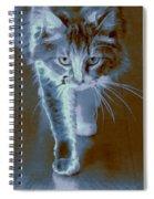 Cat Walking Spiral Notebook