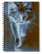 Cat Walking Spiral Notebook