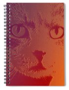 Cat With Intense Stare Abstract  Spiral Notebook