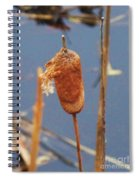Catails Spiral Notebook