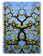 Catalpa Tree Spiral Notebook