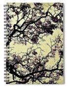 Catalpa Tree Gold Spiral Notebook