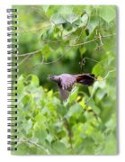 Catbird Spiral Notebook