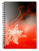 Catching A Snowflake Spiral Notebook