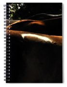 Catching Some Shade 17197 Spiral Notebook