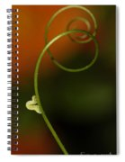 Caterpillar And Curly Branch Spiral Notebook
