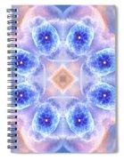 Cats Eye Nebula V Spiral Notebook