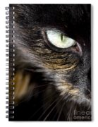 Cats Eye Spiral Notebook