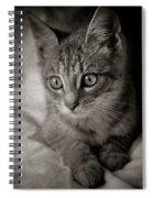 Cat's Eyes #05 Spiral Notebook