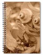 Cats Eyes Spiral Notebook