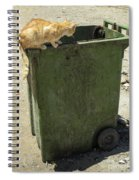Cats On And In Garbage Container Spiral Notebook