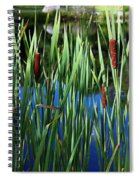 Cattail Pond In Pastel Spiral Notebook
