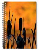 Cattail Silhouette Spiral Notebook
