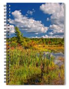 Cattails And Clouds Spiral Notebook