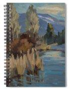 Cattails At Harry's Pond 1 Spiral Notebook