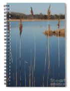 Cattails Cape May Point Nj Spiral Notebook