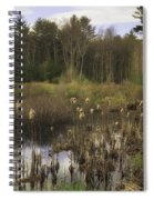 Cattails Spiral Notebook