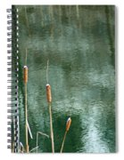 Cattails On Green Spiral Notebook