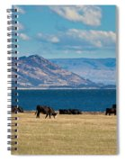 Cattle Grazing At Hawea Lake In Southern Alps In New Zealand Spiral Notebook