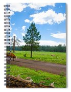 Cattles Roaming Through Hawley Lake Arizona Spiral Notebook