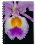 Cattleya Orchid Spiral Notebook