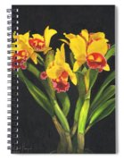 Cattleya Orchid Spiral Notebook
