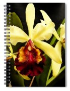 Cattleya Too Spiral Notebook