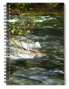 Caught By The Water Spiral Notebook