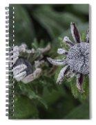Caught Cold Spiral Notebook