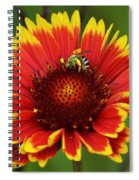 Caught Snacking Spiral Notebook