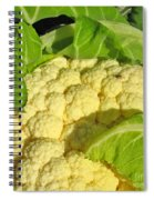 Cauliflower With A Visitor. Square Format Spiral Notebook