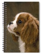 Cavalier King Charles Spaniel Dog Spiral Notebook