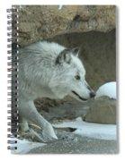 Cave Dweller Spiral Notebook