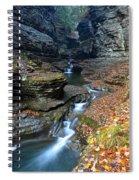 Cavernous Walls Spiral Notebook