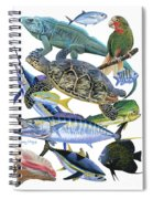 Cayman Collage Spiral Notebook