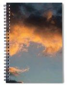 Cc  10 Spiral Notebook