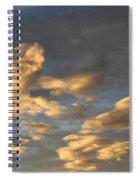 CC1 Spiral Notebook
