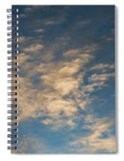 CC4 Spiral Notebook