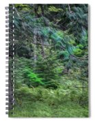 Cedar Along The Trail Of Cedars Glacier National Park Painted Spiral Notebook