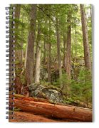 Cedar Logs At Garibaldi Spiral Notebook