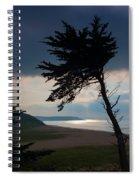 Cedar Silhouettes Spiral Notebook