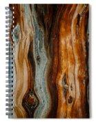 Cedar Texture Spiral Notebook