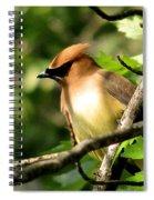 Cedar Waxwing Spiral Notebook