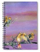 Bohemian Waxwings Birds Spiral Notebook