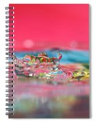 Celebration Spiral Notebook