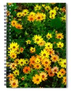 Celebration Of Yellows And Oranges Study 3 Spiral Notebook