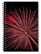 Celebration Xvii Spiral Notebook