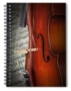 Cello Bridge And Beethoven Spiral Notebook